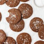 Gluten Free Double Chocolate Salted Brownie Cookies