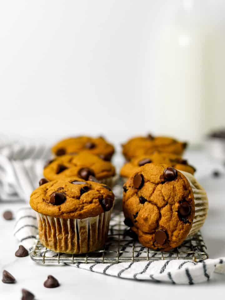 Healthy Gluten Free Pumpkin Chocolate Chip Muffins